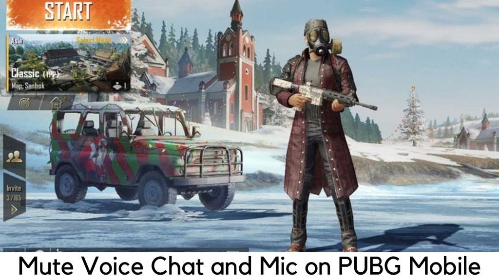Mute Voice Chat in PUBG
