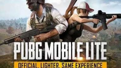 Photo of PUBG Mobile Lite WinnerPass Brings Exclusive Rewards, Challenges After v14.0 Update