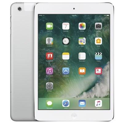 Apple iPad mini Wi-Fi + Cellular