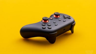 Photo of Does Stadia Support Cross-Platform Play?